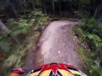 Whistler Bike Park No Duff