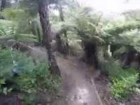 Arch Hill Reserve MTB - Twist & Shout