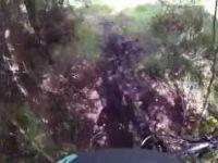 Hill of Fare - Teddybears Picnic Trail