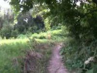 Etobicoke Creek Grind