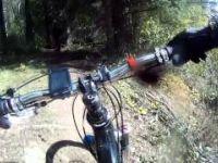 Mountain Biking Fernie BC Swine Flu