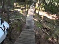 Long Wood Bridgework