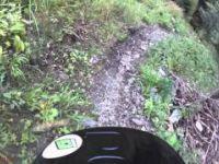 Schöckl Trail Area - Downhill | LINES