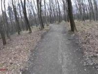 Sopron Downhill | LINES