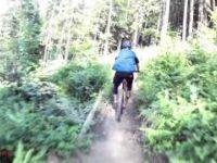 Enzi Trail | LINES