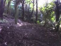 Waipatiki Trail