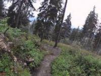Freeride Schöckl | LINES