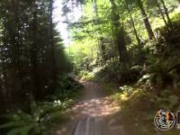 Lily\Lizard Trail - Blanchard Mountain -...