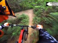 Hong Kong TMS Hornet Downhill (French Trail)...
