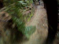 Pondy Down Hill