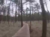 Moors Valley Blue Trail Full Lap - 16m32