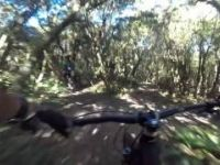 fat bike fun