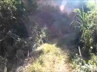 MLhullier Trail