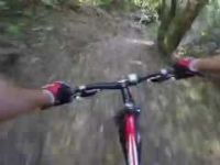 Mountain Biking in Te Apiti - Manawatu Gorge