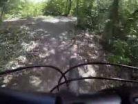 Arch Hill Reserve MTB - Training Wheels