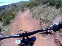 Trilho Parque ecológico Funchal