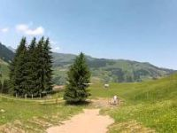 Buchegg-Trail in Saalbach Hinterglemm 2012 by...