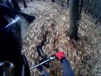 urpin trail 2010