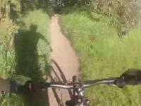Kinsmen park river trail Aug 16.2016