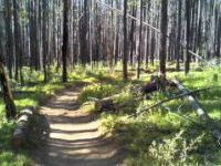 2011 08 MTB Loon Lake Trail #1