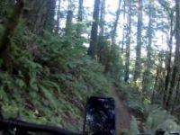 Nasty Stench Trail to Fallen Leaf Lake Pavilion