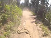 Sun Peaks Bike Park - Repeat Offender [Aug 2013]