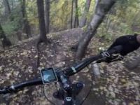Too Much North Trail (MTB)