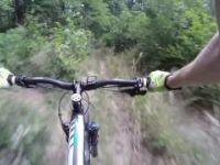 Muchova bouda - MTB trail