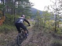 Molista MTB IV - The Trailmasters Haven