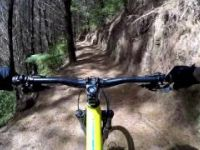 Cougar MTB Park Tokoroa | Mountain Lion