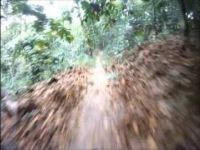 Bukit Kiara Enduro Asia MTB - Stage 2