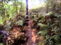 Bukit Kiara Enduro Asia MTB - Stage 3