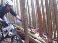 Dale's Trail