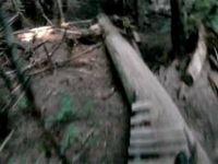 Mystery Downhill 2011
