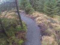 Stream trail course check..
