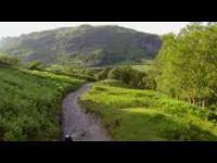 Roots Mountain Biking
