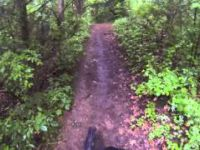 Potawatomi Trail,Pinckney Rec. Area