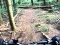 Stanley Park Mountain Bike