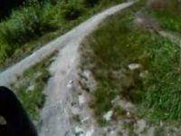 Burnaby Dead Moped