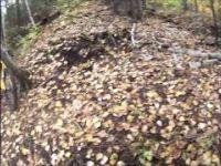 GoPro: ALain's Mountain Bike Ride Pipe...