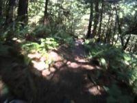 Dog Mountain Crash