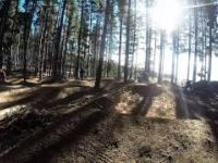 Majura Pines Dirt Jumps