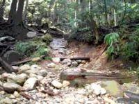 Crinkum Trail Video
