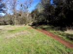 Culvert Trail Auburn 2005