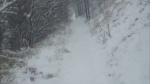 Singletrack in the Snow