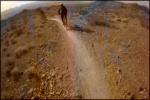 Bootleg POW Trail
