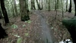 more UCSC trails
