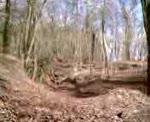Box Woods Double