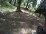 Ledgeview - Sidetrack, Lost Oakley's