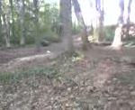 Diablo trails 15